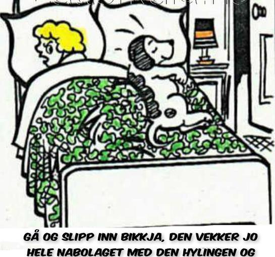 1986819718Slipp-inn-bikkja-hunden-sover-latterkula.no